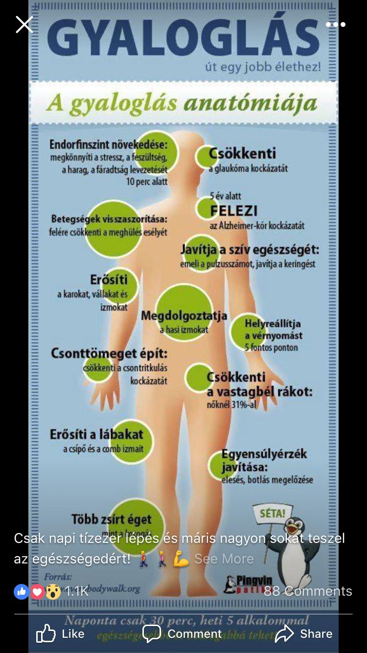 """Mi az a """"zsírégető pulzus""""?"""