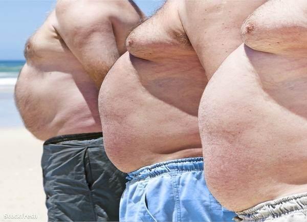 férfiak egészségét veszít zsír