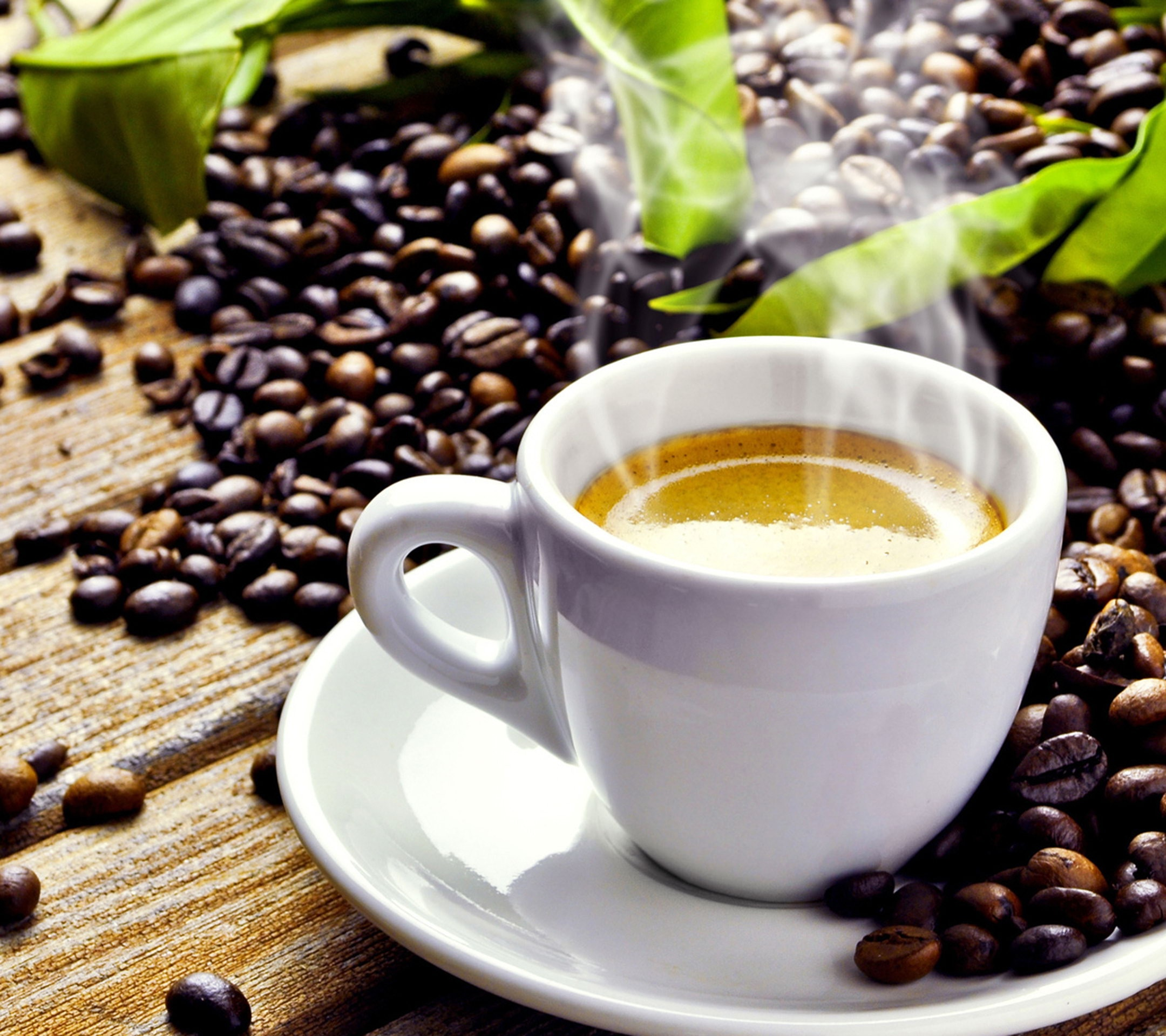 lehet fekete kávé, hogy u lefogy