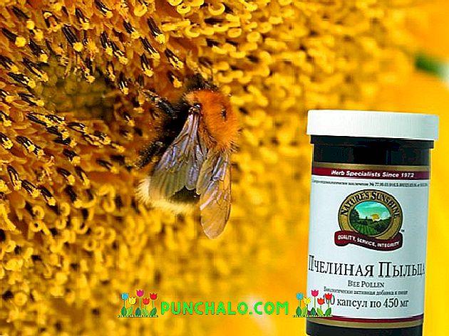 méhek pollenje a fogyáshoz