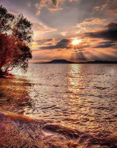 föld o tavak fogyás