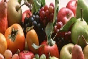 panax ginzeng zsírégetés fogyás számít
