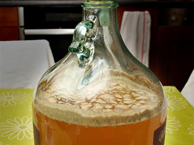 fogyni a sörfőző élesztővel