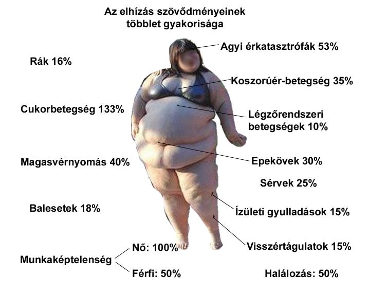 fogyni az elhízás a testzsír hatásainak csökkenése