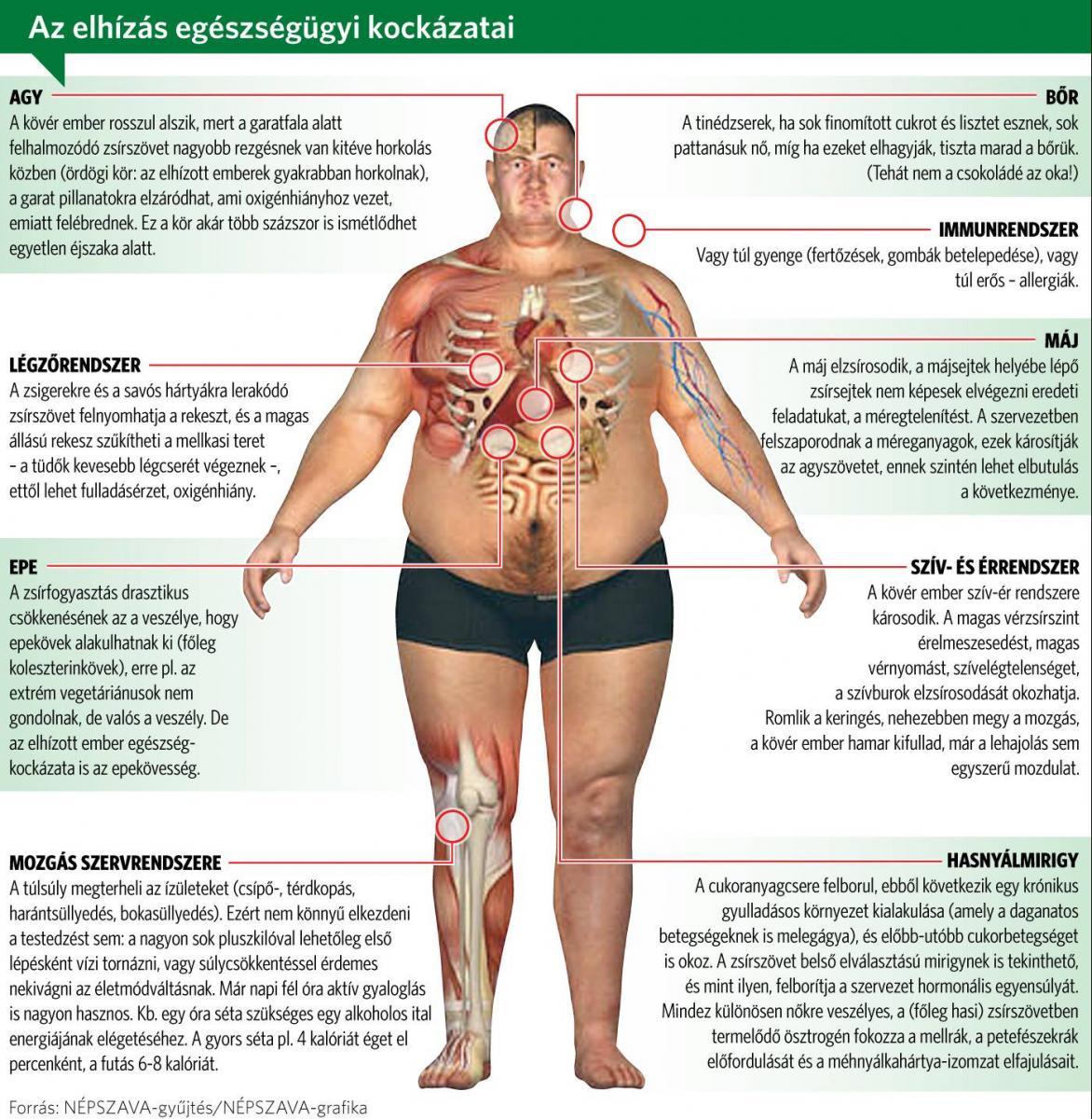 éget a kövér sikertörténetek a legtöbb fogyás 4 hét alatt