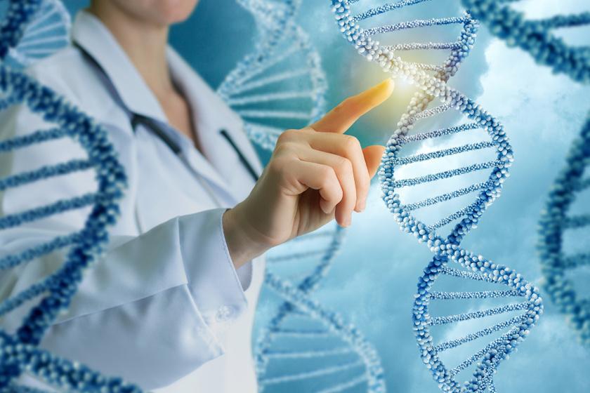fogyni a DNS alapján transz a fogyásért