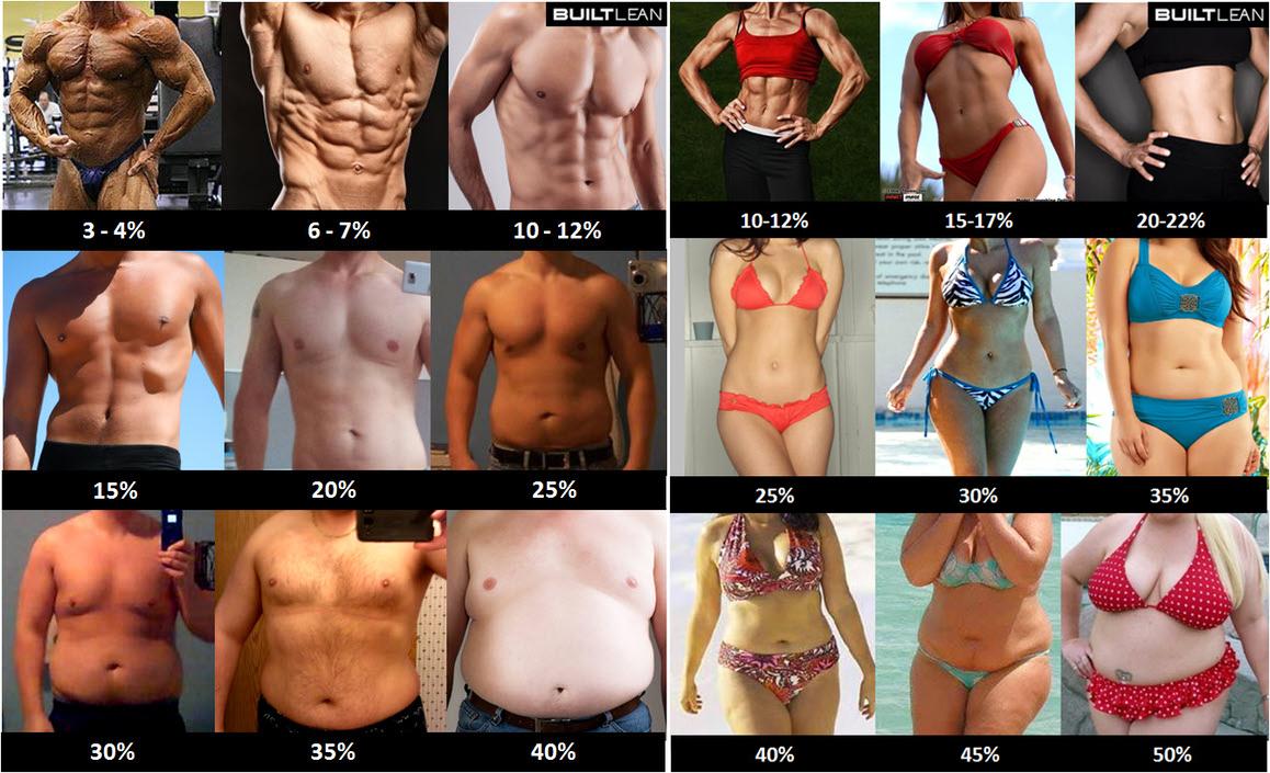 A testzsírszázalék mérés | Mivel és hogyan történik?